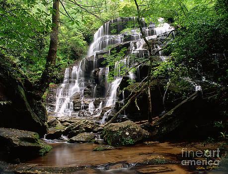 Yellow Branch Falls by Matthew Turlington