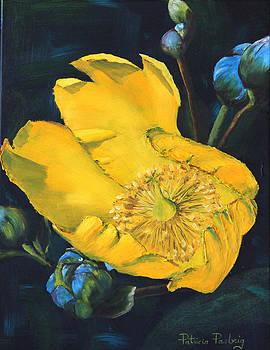 Yellow Breeze by Patricia Pasbrig
