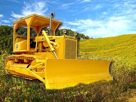 Yellow Caterpillar by Roy Foos