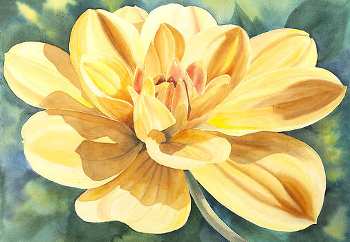 Yellow Dahlia by Elena Polozova
