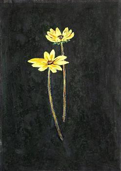 Usha Shantharam - Yellow Daisy couple