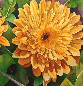 Yellow Daze by Shagufta Mehdi