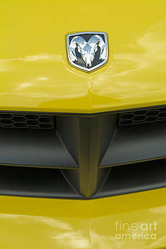 David Zanzinger - Yellow Dodge Ram Emblem