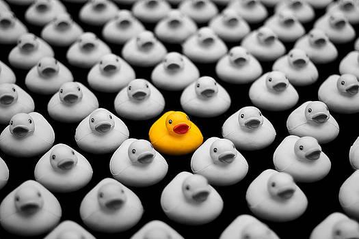 Yellow Ducky by Mark Van Scyoc
