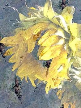 Yellow Fading Flower by Patricia Januszkiewicz