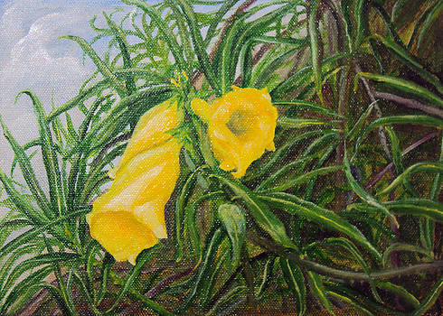 Yellow Flower Blossom under a group of green bush leaves by Manjula M Y