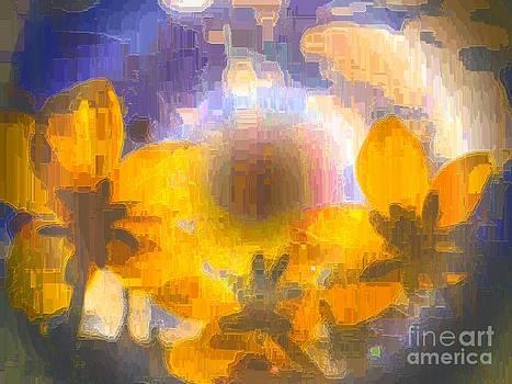 Yellow flowers going for Sun by Dana Hermanova