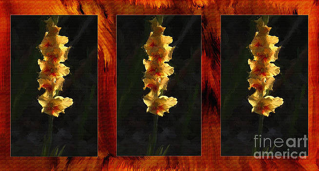 Yellow Gladiolus Triptych Oil Painting. by Heinz G Mielke