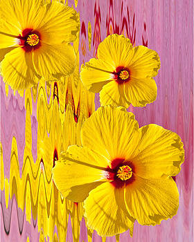 Yellow Hibiscus by Beverly Hanson