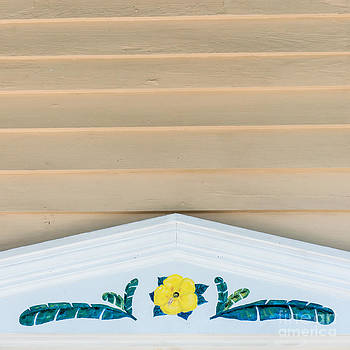 Ian Monk - Yellow Hibiscus Wall Detail Key West - Square