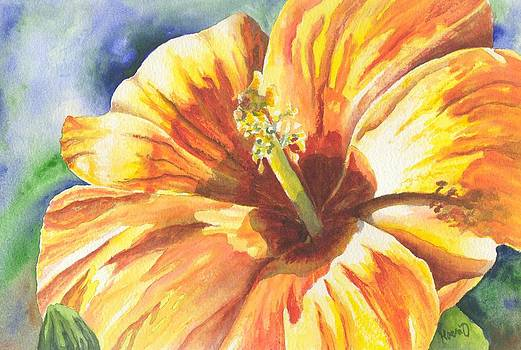 Yellow Hibiscus watercolor painting by Oty Kocsis