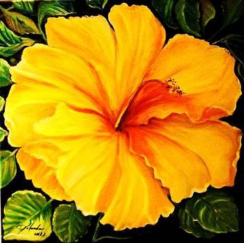 Yellow Hibiscus by Yolanda Rodriguez
