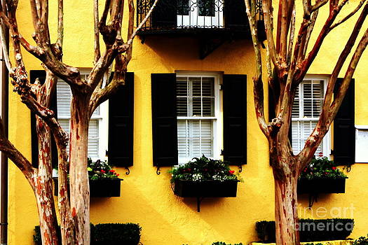Bright Yellow House by Pete Dionne