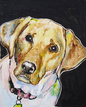 Yellow Lab 2 by Carole Powell