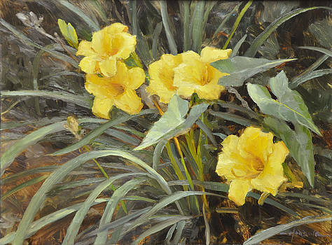 Yellow lilies by Scott Harding