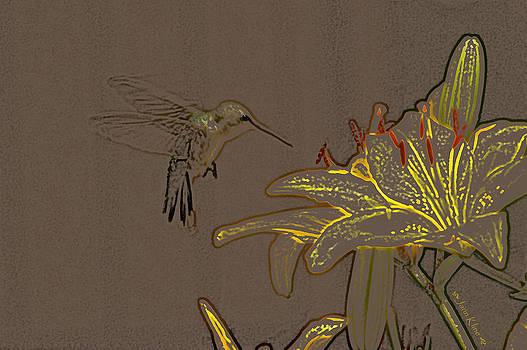 Yellow Lily by Jann Kline