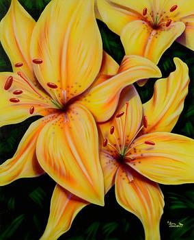 Sam Davis Johnson - Yellow Lily