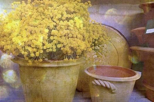 Marysue Ryan - Yellow flowers, springtime prints, flower art