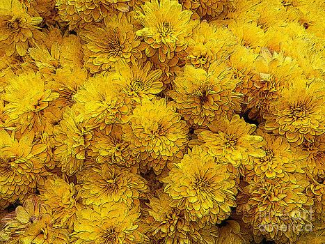 Paul Mashburn - Yellow Mums The Word