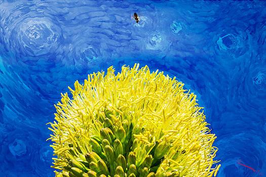 Yellow on Blue by SM Shahrokni