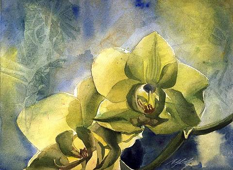 Alfred Ng - yellow orchid with blues