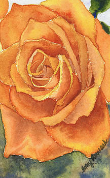 Yellow Rose by Amy Lewark