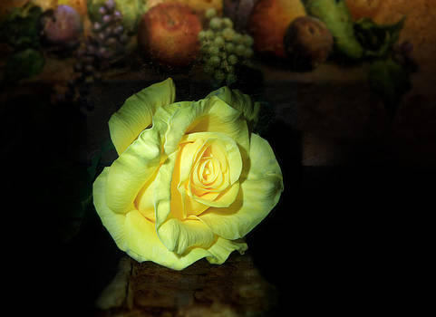 Yellow Rose by Cecil Fuselier