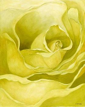 Yellow Rose by Diane Nations