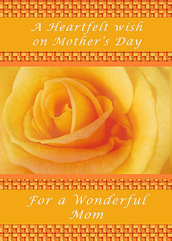 Michael Peychich - Yellow Rose for Mothers Day