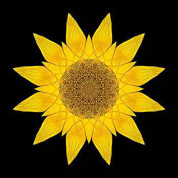 Yellow Sunflower X Flower Mandala by David J Bookbinder