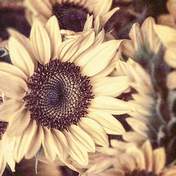 Lisa Russo - Yellow Sunflowers in a Vintage Tone