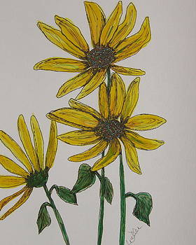 Marcia Weller-Wenbert - Yellow Sunshine