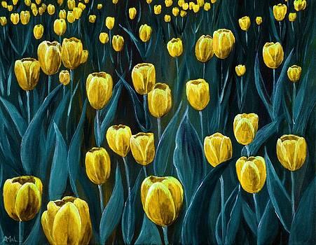 Anastasiya Malakhova - Yellow Tulip Field