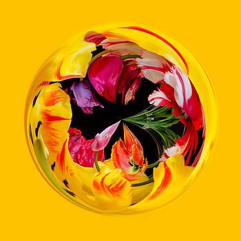 Yellow Tulip Orb  by Georgette Grossman