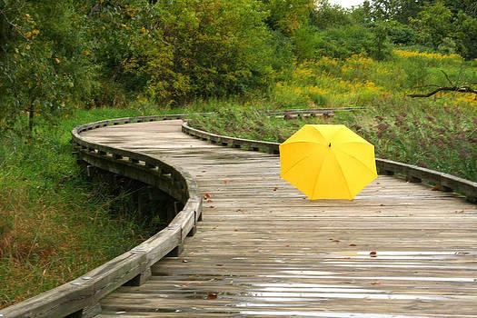 Yellow Umbrella after Rain by Sarah Yost