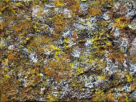 Yellow Wall by P Dwain Morris