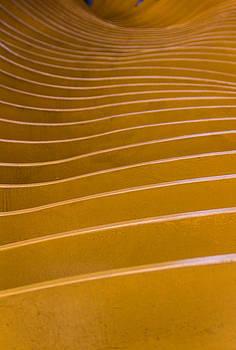 Yellow Waves by Francesco Rizzato