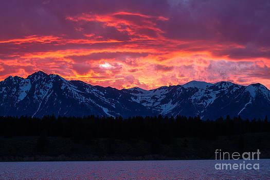 Yellowstone Beauty by Susie Hoffpauir