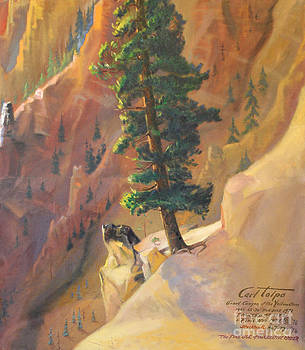Art By Tolpo Collection - Yellowstone Canyon - Tolpo Point Mural panel 8