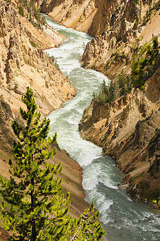 Yellowstone canyon by Jeffrey Banke