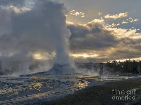 Sandra Bronstein - Yellowstone Glory