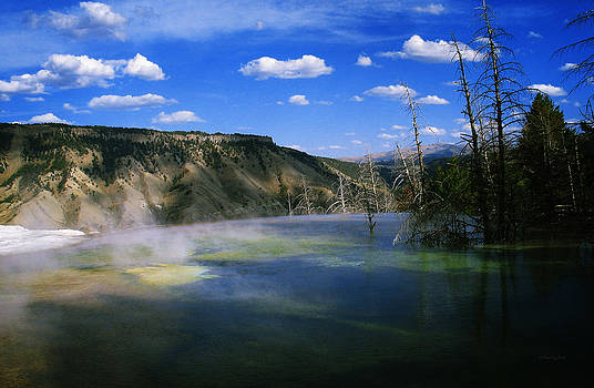 Yellowstone National Park 3 by Xueling Zou