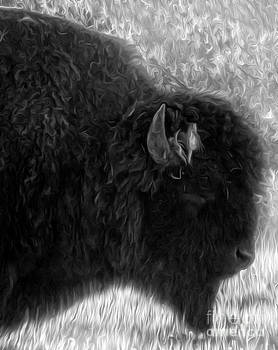 Gregory Dyer - Yellowstone National Park Bison - 02