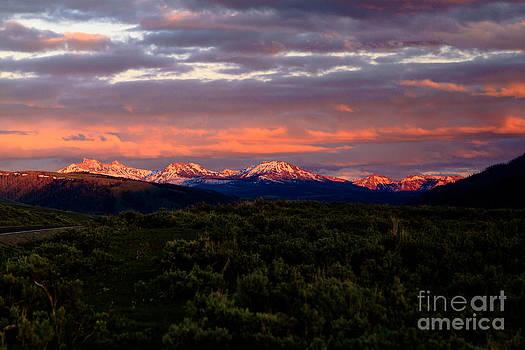Yellowstone Sunset by Susie Hoffpauir