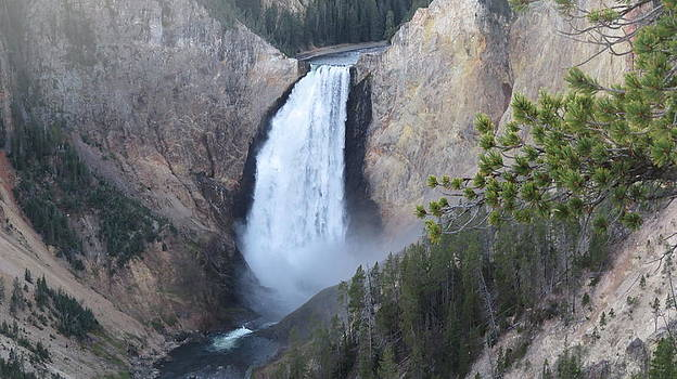 Yellowstone's Grand Canyon by Diane Mitchell