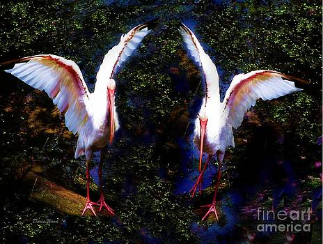 Yes We Can Dance by Doris Wood