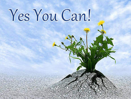 Dreamland Media - Yes You Can