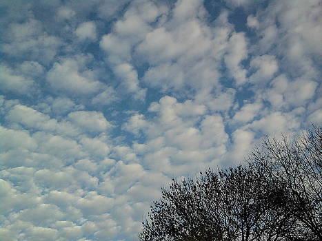 Yesterdays morning sky by Geoff Cooper