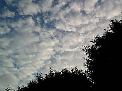 Yesterdays morning sky two by Geoff Cooper