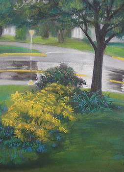 Yield on Yellow by Sherri Anderson